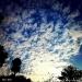 Sky-234.jpg