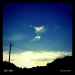 Sky-240.jpg