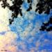 Sky-245.jpg