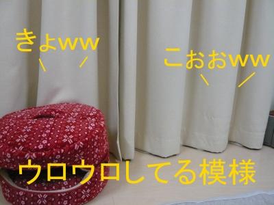 023_20131211220739a49.jpg