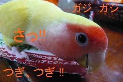 029_201401031551410df.jpg