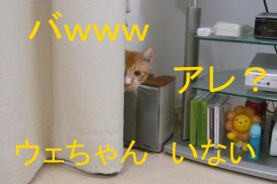 031_20131211220826ca5.jpg