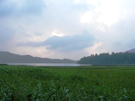 尾瀬 沼山峠~尾瀬沼ヒュッテ 風景 5