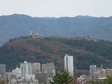 松山総合公園から見た松山城 1