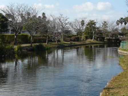 ひょこたん池公園 1