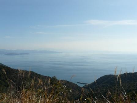 佐田岬半島 権現山展望台とその付近からの眺望 11