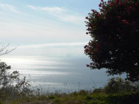 佐田岬半島 大久展望台からの眺望 1