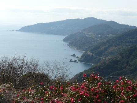 佐田岬半島 大久展望台からの眺望 4