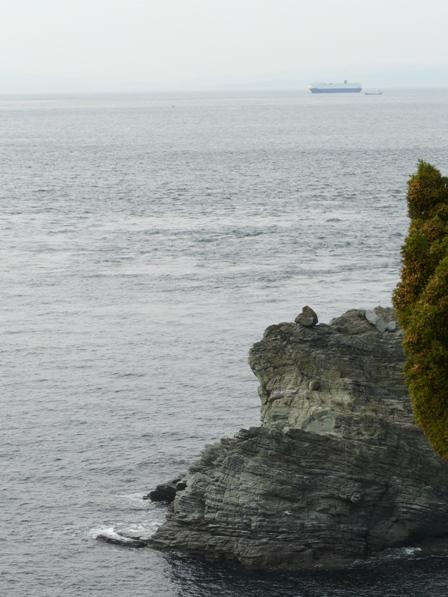 佐田岬灯台からの眺望 5