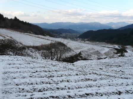 東温市上林 雪景色 6