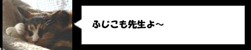 TBSの安住紳一郎がアナウンサーになったキッカケ