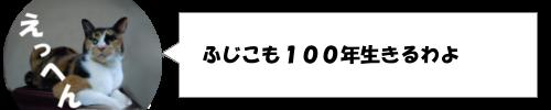 寿命は人間以上!100年以上生きるウニがいる?