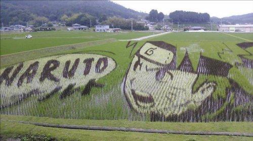 すごいと話題になったNARUTO(ナルト)の田んぼアート