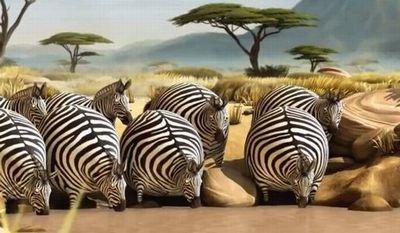 rollin safari_fc2