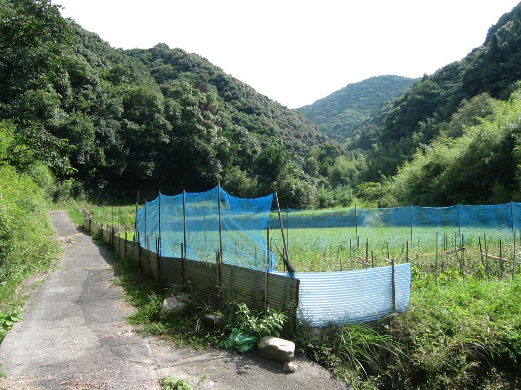 鹿ヶ瀬峠 (2)