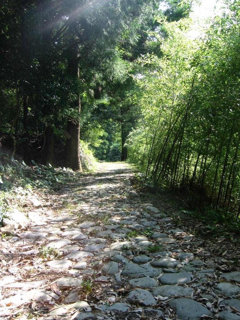 鹿ヶ瀬峠 (3)