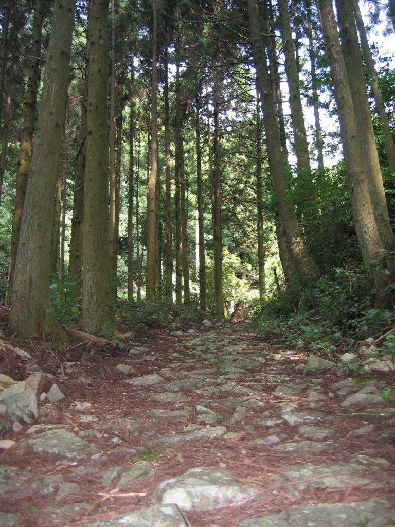 鹿ヶ瀬峠 (9)