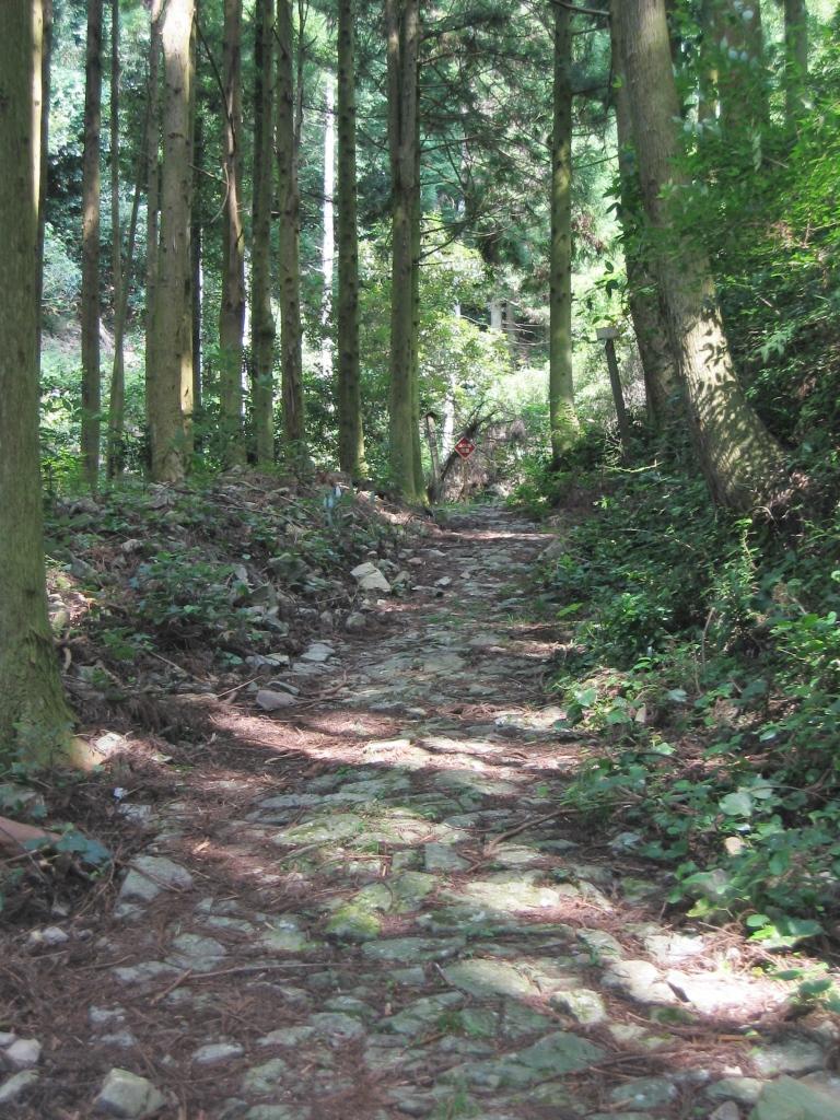 鹿ヶ瀬峠 (10)