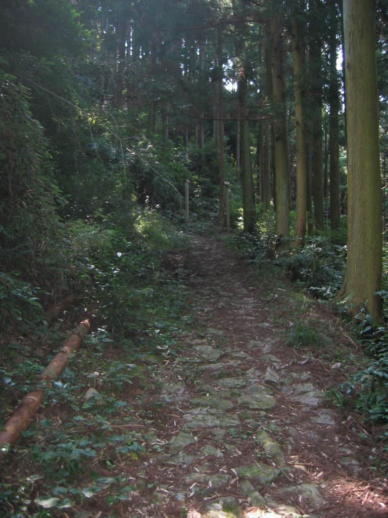 鹿ヶ瀬峠 (12)