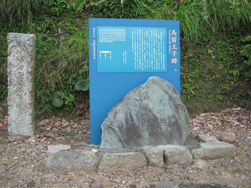 鹿ヶ瀬峠(15)