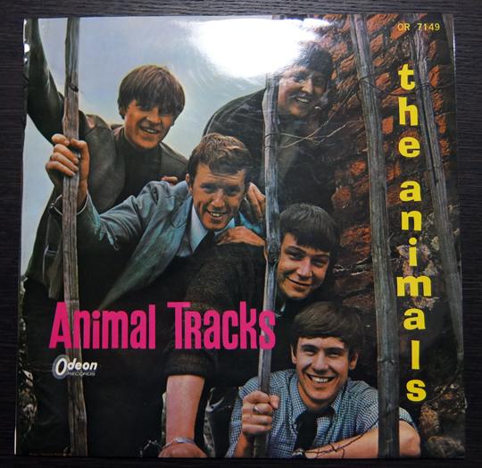 Animals2 (3)