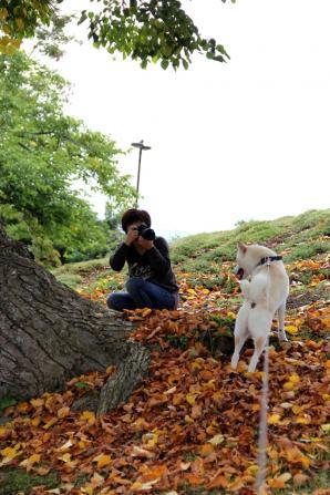 モデルっぽい犬と、カメラマンっぽい妹