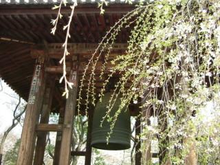 増上寺大梵鐘