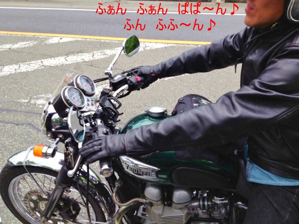 IMG_3970_1.jpg