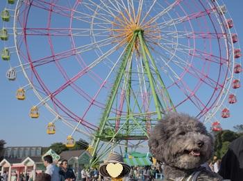 ひたち海浜公園20141019-1