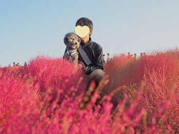 ひたち海浜公園20141019-22