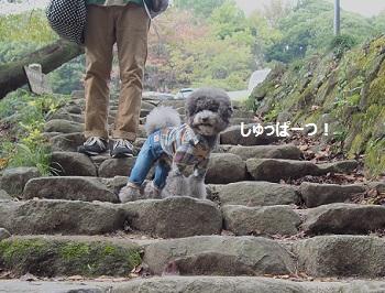 筑波山20141026-1