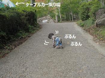 筑波山20141026-8