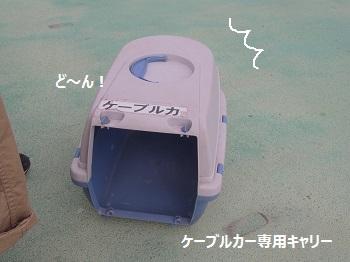 筑波山ケーブルカー4