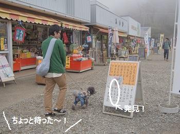 筑波山山頂4