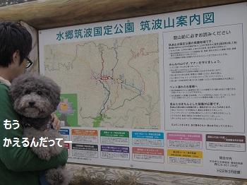 筑波山山頂10