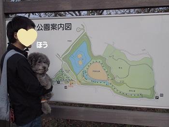 守谷城址公園2