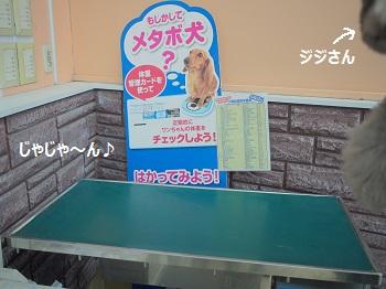 ジョイフル本田3