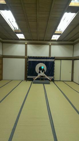 熊本旅行:熊本城 数寄屋丸②