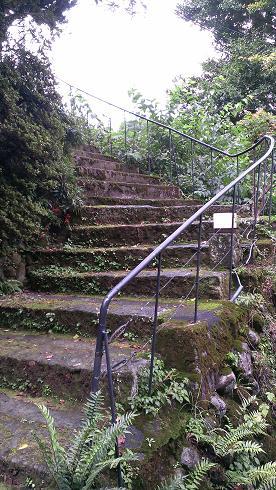 熊本旅行:黒川温泉 散歩2