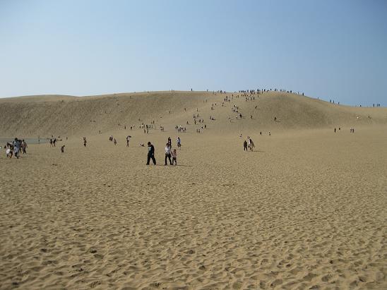 鳥取旅行;鳥取砂丘3