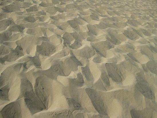 鳥取旅行;鳥取砂丘 砂