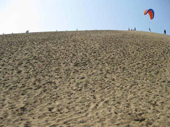 鳥取旅行;鳥取砂丘 パラグライダー