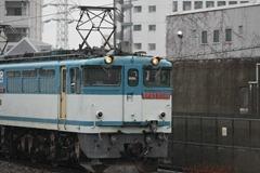 IMG_2978