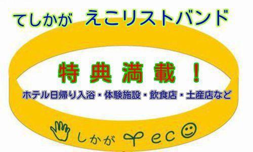 ecoband2013_ex.jpg