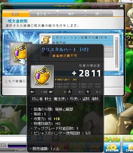 Maple140112_225147.jpg