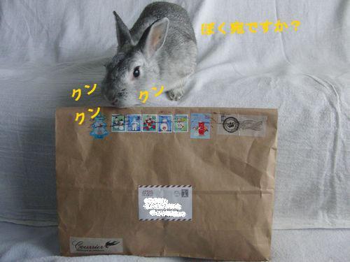 CIMG81901.jpg