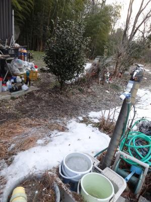 立水洗穴掘り前2