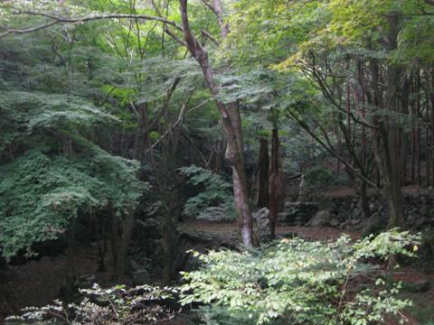 松阪 山の辺の道 038