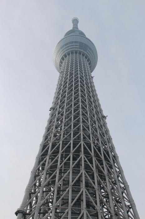 スカイらーつ (15)