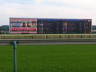 tokyo-race-course.jpg